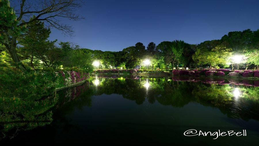御深井橋から見る御深井池(おふけ池)とツツジ(躑躅)