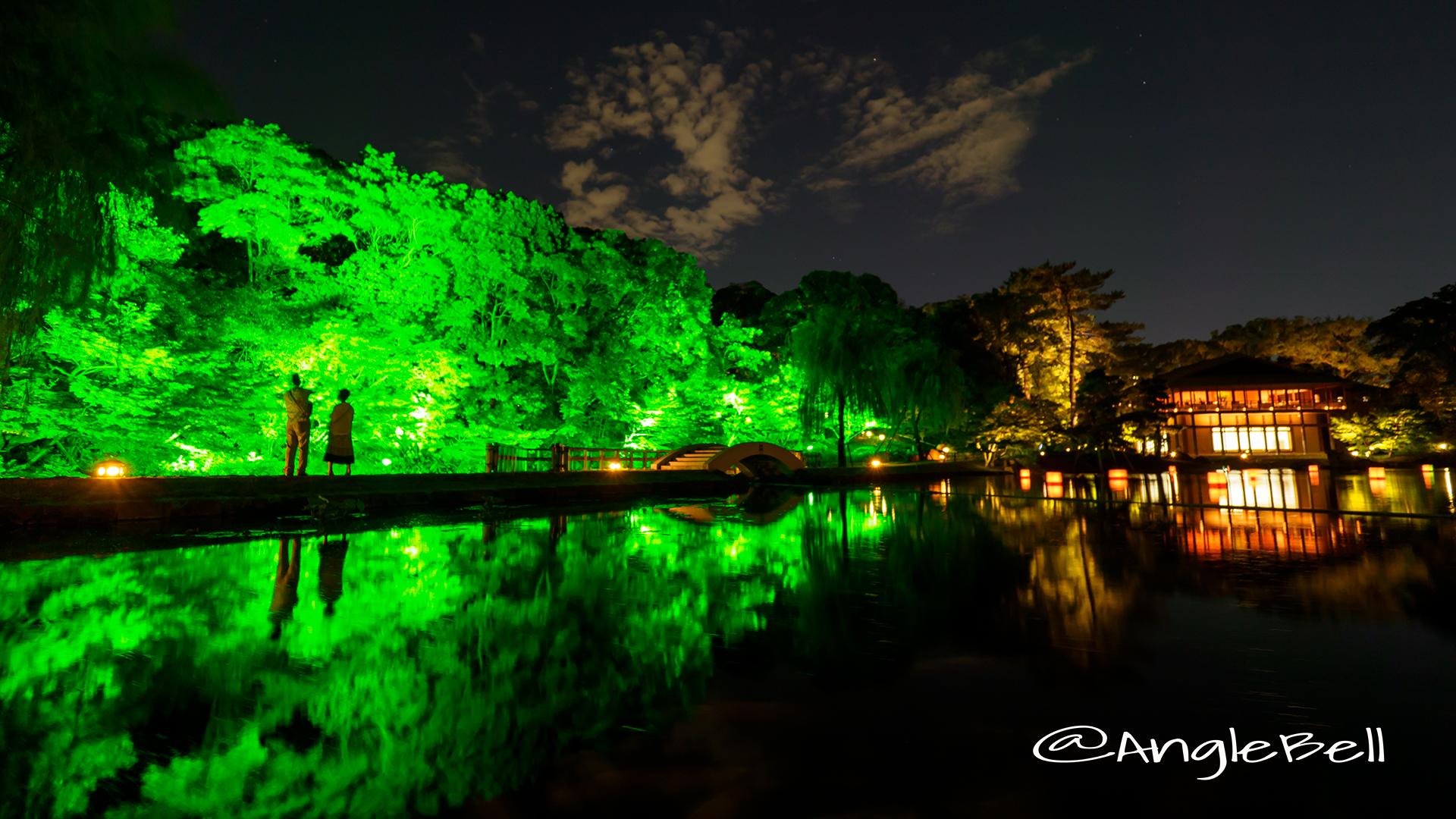 名古屋 徳川園 龍仙湖と太鼓橋 夜会ライトアップ