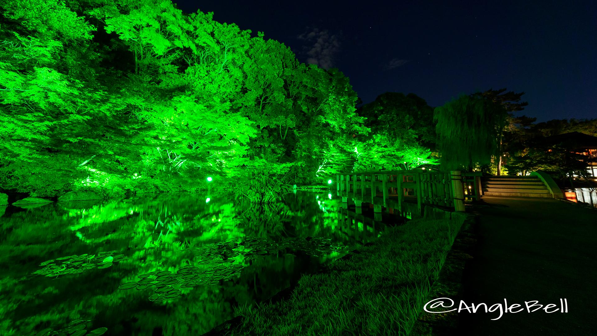 夕べを涼む 徳川園夜会 西湖堤 ライトアップ2017