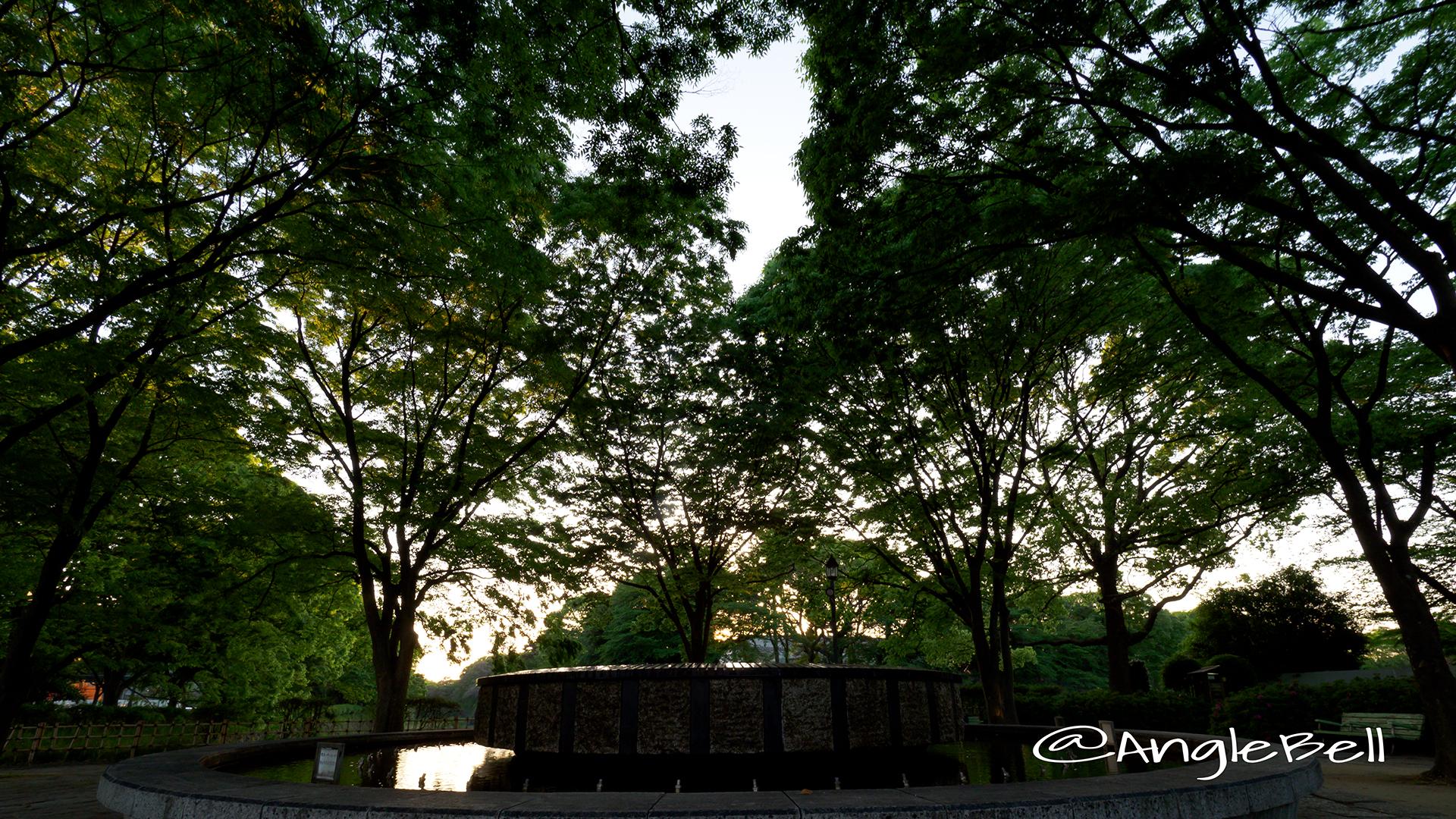 夕景 名城街園 噴水