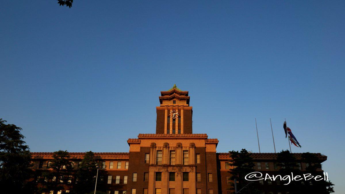 夕景 名古屋市役所と鯉のぼり