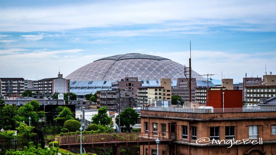 鍋屋上野浄水場とナゴヤドーム