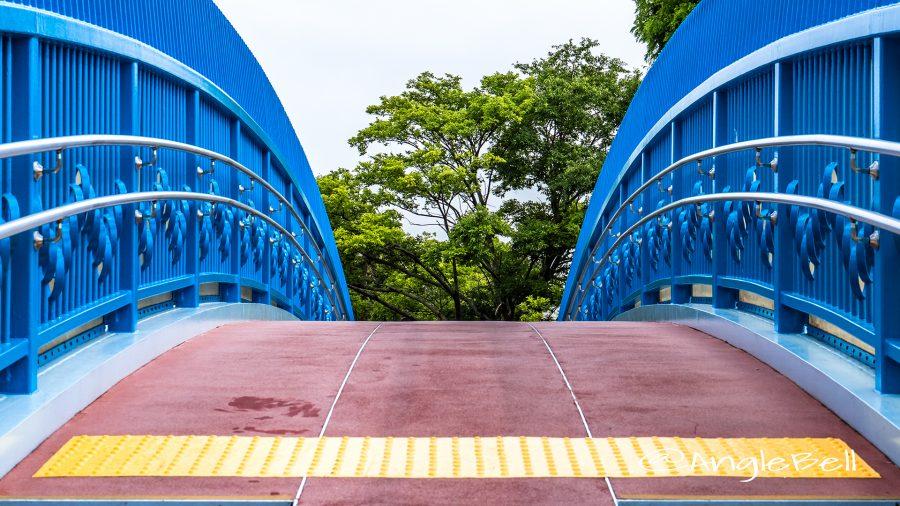 茶屋ヶ坂歩道橋と天満緑道 樹木