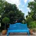 名古屋港ブルーボネット カラースキームガーデン ひまわりと青いベンチ