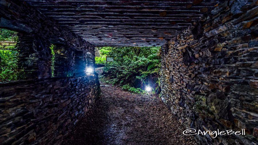 東山動植物園 旧ロックガーデン トンネル