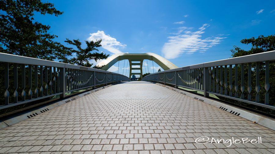 荒子川公園 荒子川パークブリッジ