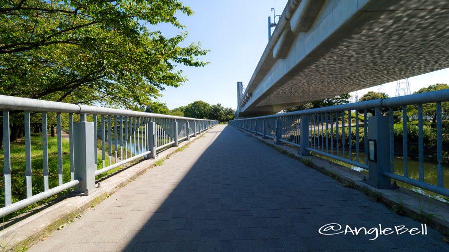 荒子川公園 荒子川連絡橋