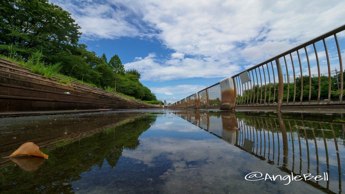 白鳥公園熱田記念橋 北から見る夏の空