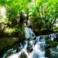 若葉の候、大曽根の瀧 滝しぶき