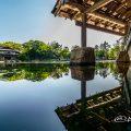 龍仙湖 湖面と観仙楼 名古屋徳川園