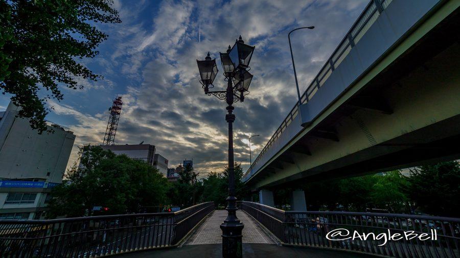 夕景 若宮大通公園 若宮ブリッジと街灯