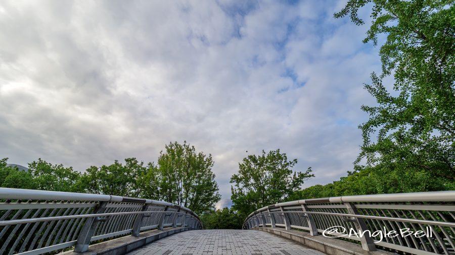 白川ブリッジから見る名古屋市科学館のプラネタリウム
