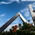 白川公園 噴水と花