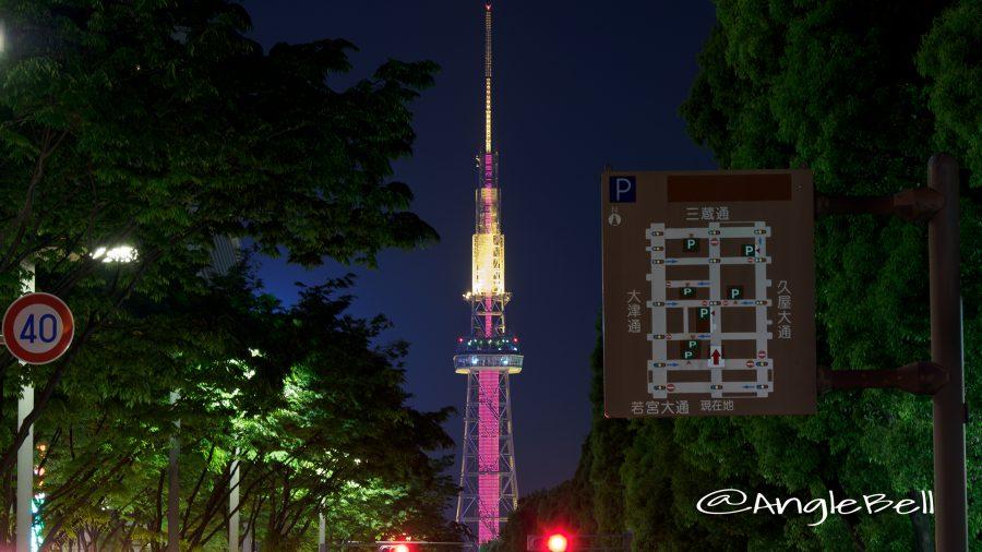 世界赤十字デー 名古屋テレビ塔 ライトアップ2017