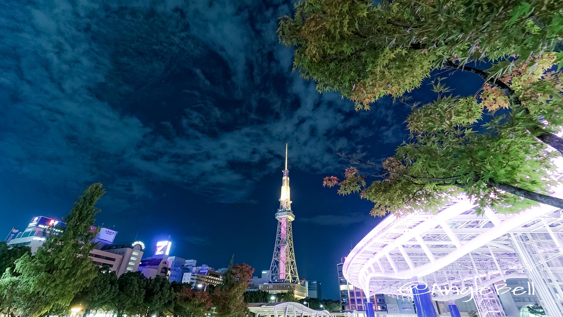Nagoya TV Tower Oasis21 Autumn Leaves 2017