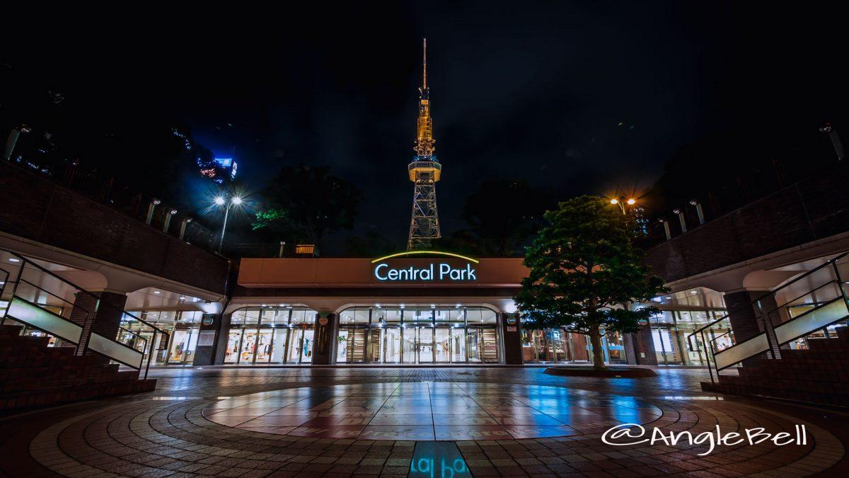 もちの木広場から見る名古屋テレビ塔