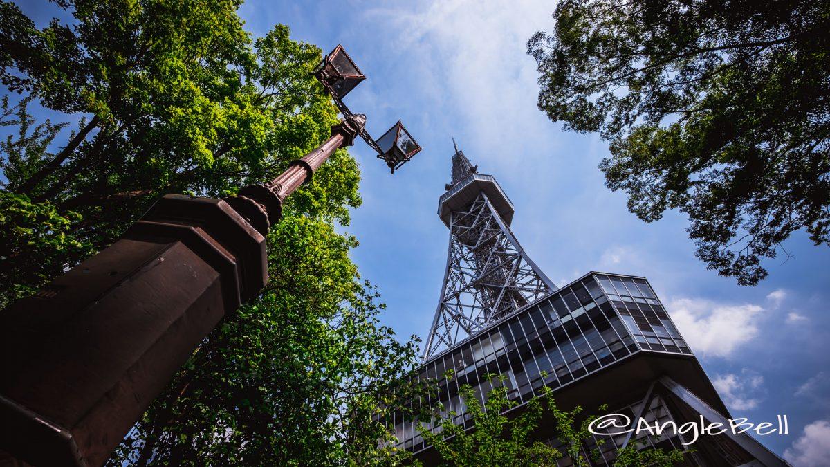 北側 街灯から見上げる名古屋テレビ塔
