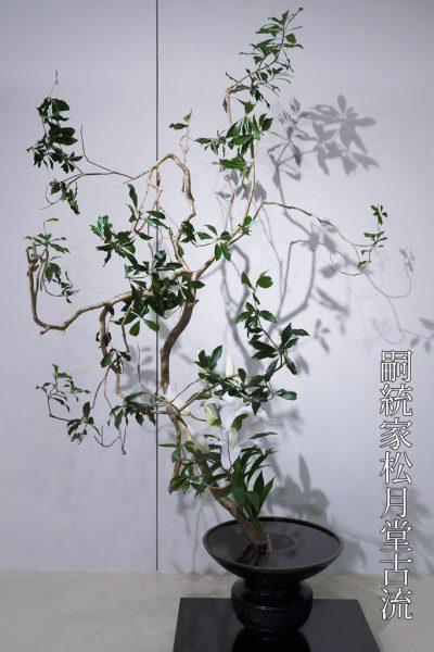 華道フェスティバル2016 嗣統家松月堂古流 Photo1