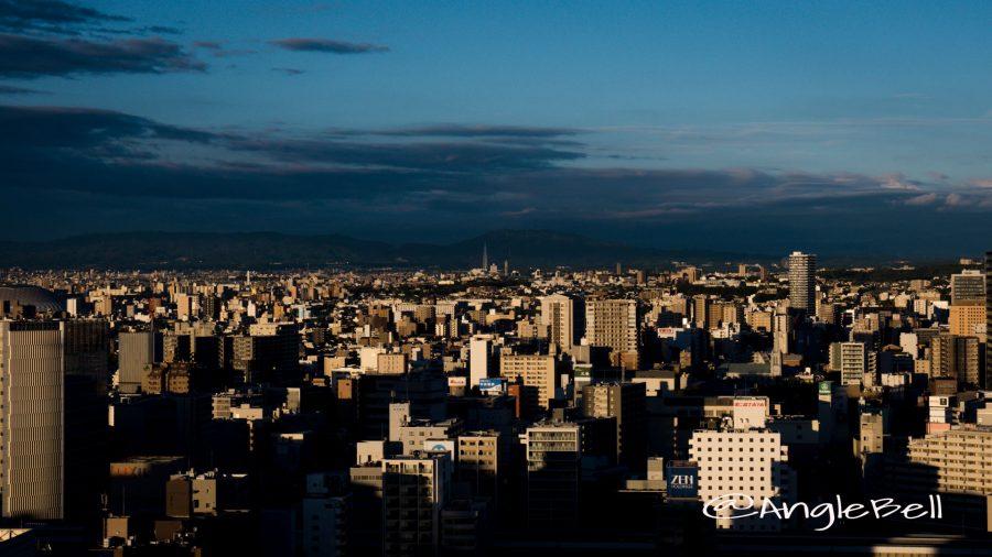 名古屋テレビ塔から見た瀬戸デジタルタワー