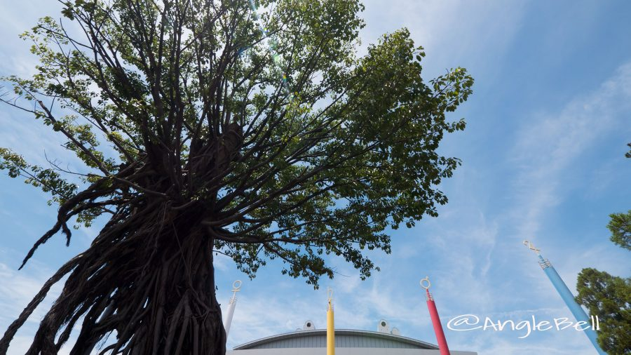 白鳥公園 アコウの木と「創造の柱」