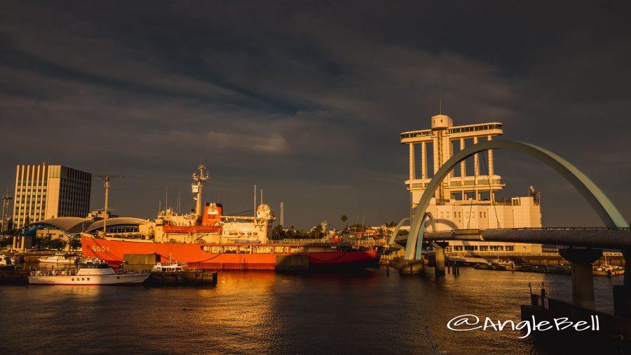 夕暮れの光と南極観測船ふじ