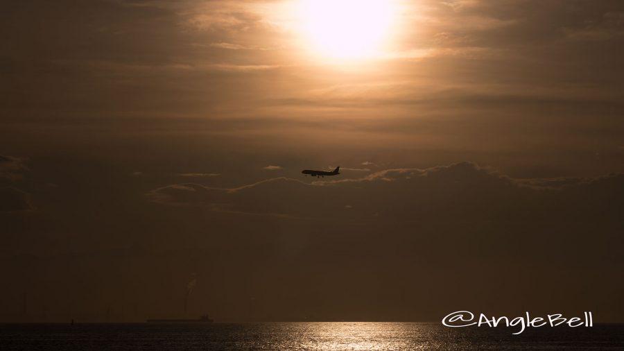 りんくうビーチと飛行機