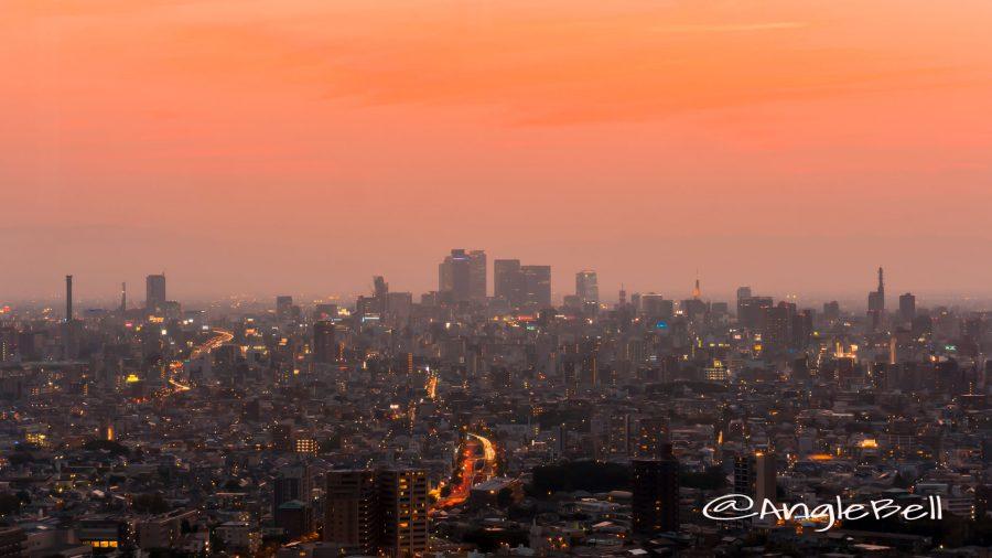 東山スカイタワー 展望室から見る名古屋駅方面と夕日