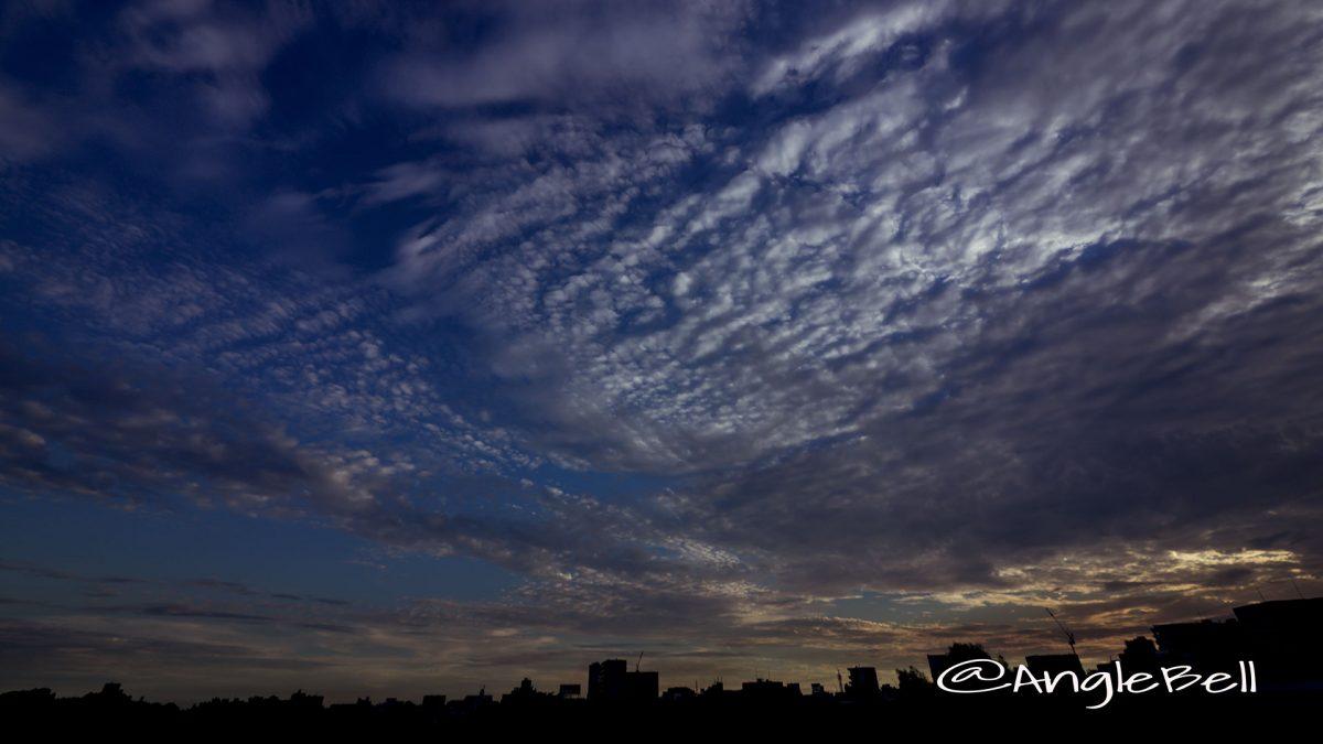 名古屋市公会堂 4階 テラスから見る町並み