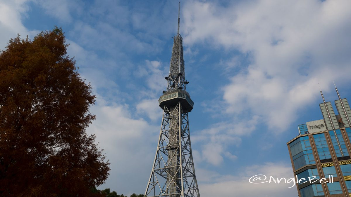 オアシス21前の街路樹から見る名古屋テレビ塔