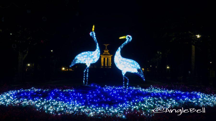 鶴舞公園 正面花壇の二羽の鶴 ライトアップ2016