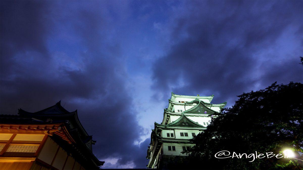 名古屋城と本丸御殿 夜景