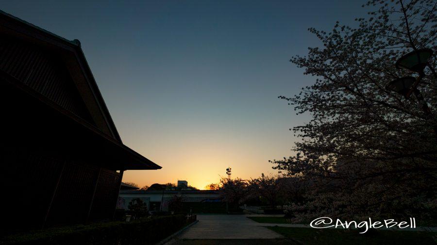 名城公園 彫刻の庭から見る朝日