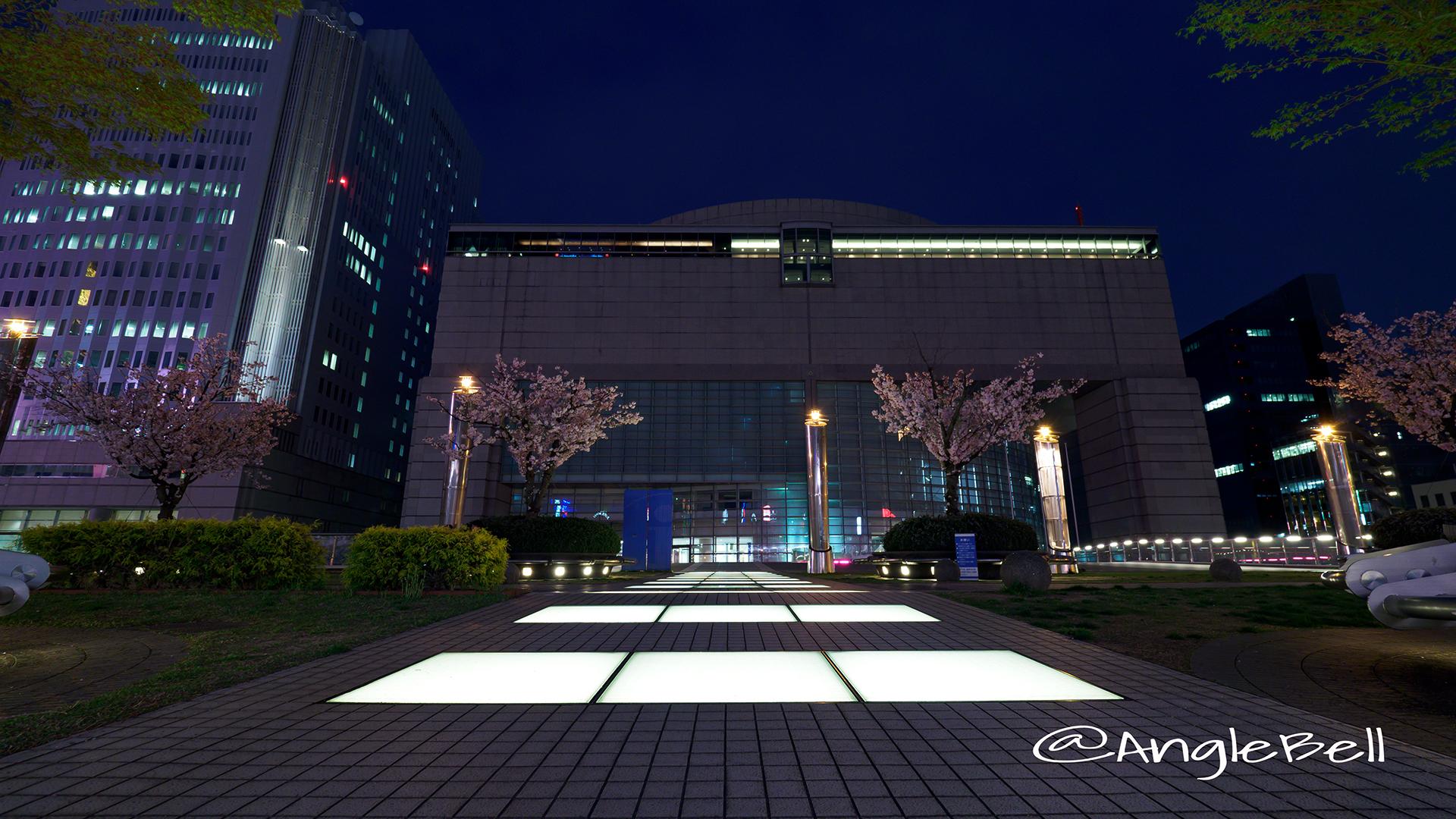 愛知芸術文化センターと夜桜
