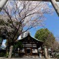 大須 三輪神社の淡墨桜と三ツ鳥居
