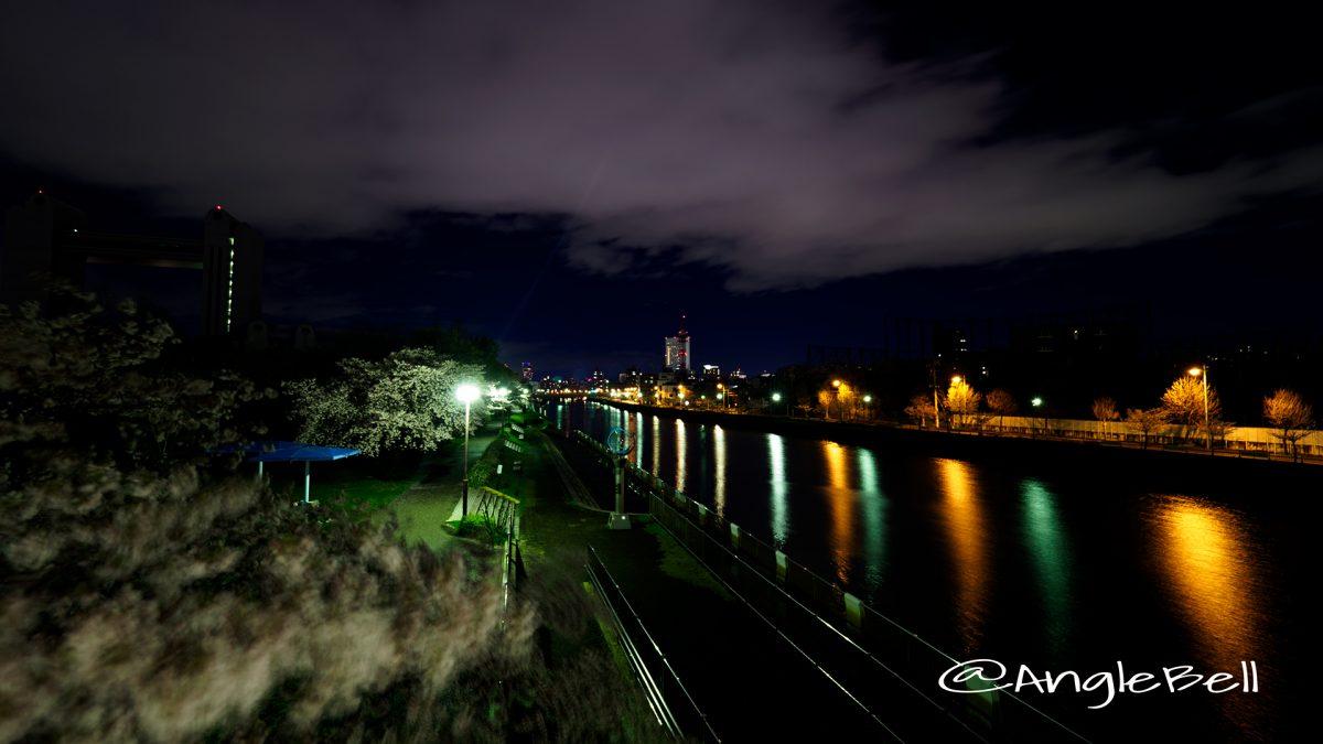 熱田記念橋から見る遊歩道と堀川