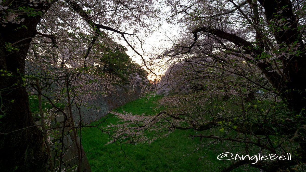 早朝 名古屋城正門 西之丸大手 外堀と朝日