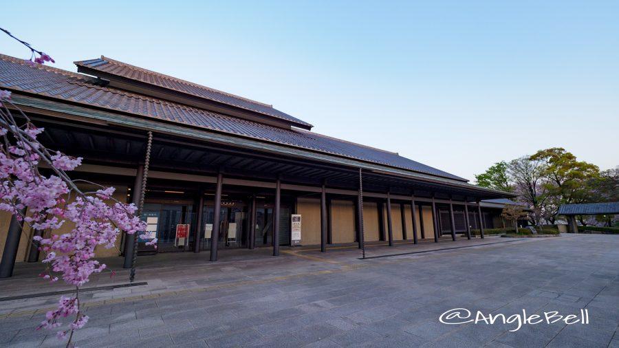 名古屋能楽堂の正面玄関と桜