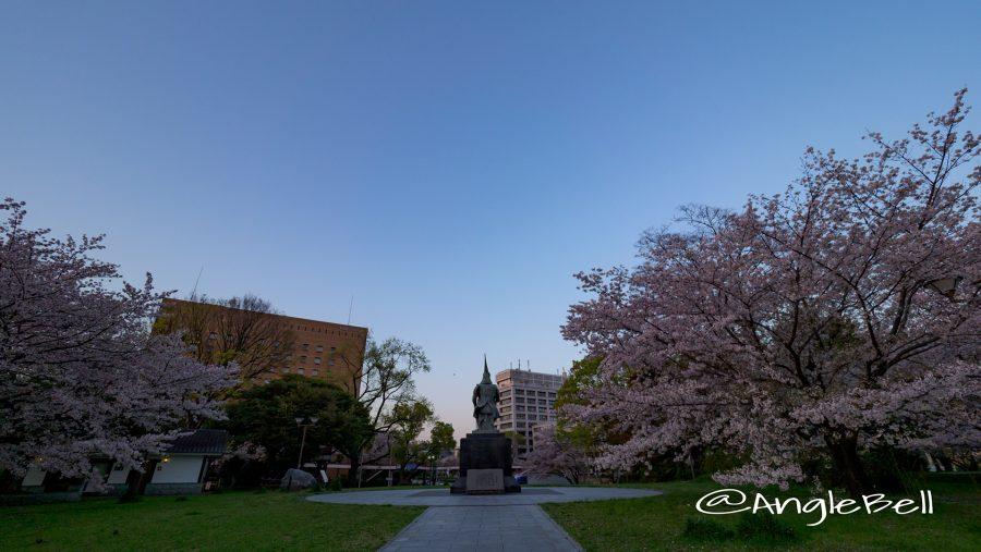 後ろ姿 加藤清正像と桜 名城公園