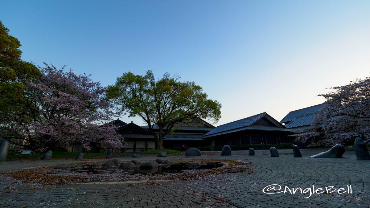 早朝 名城公園 彫刻の庭 水広場