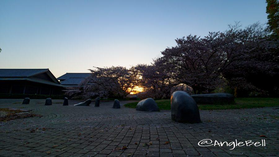 名城公園 彫刻の庭 水広場から見る朝日