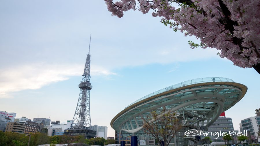 Nagoya TV Tower Oasis21 Cherry Blossoms