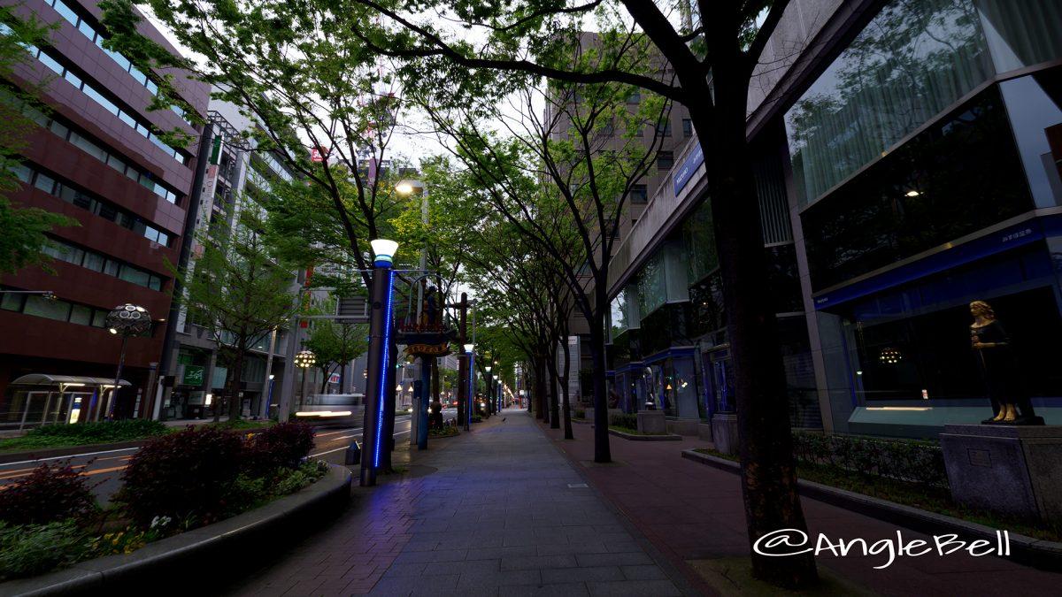 広小路通 街路樹とモニュメント