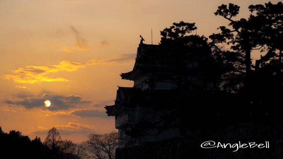 名古屋城 西南隅櫓と夕景