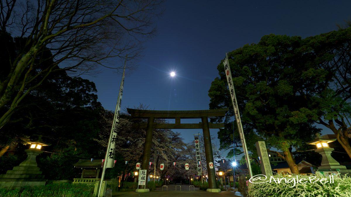 愛知縣護國神社 鳥居と月