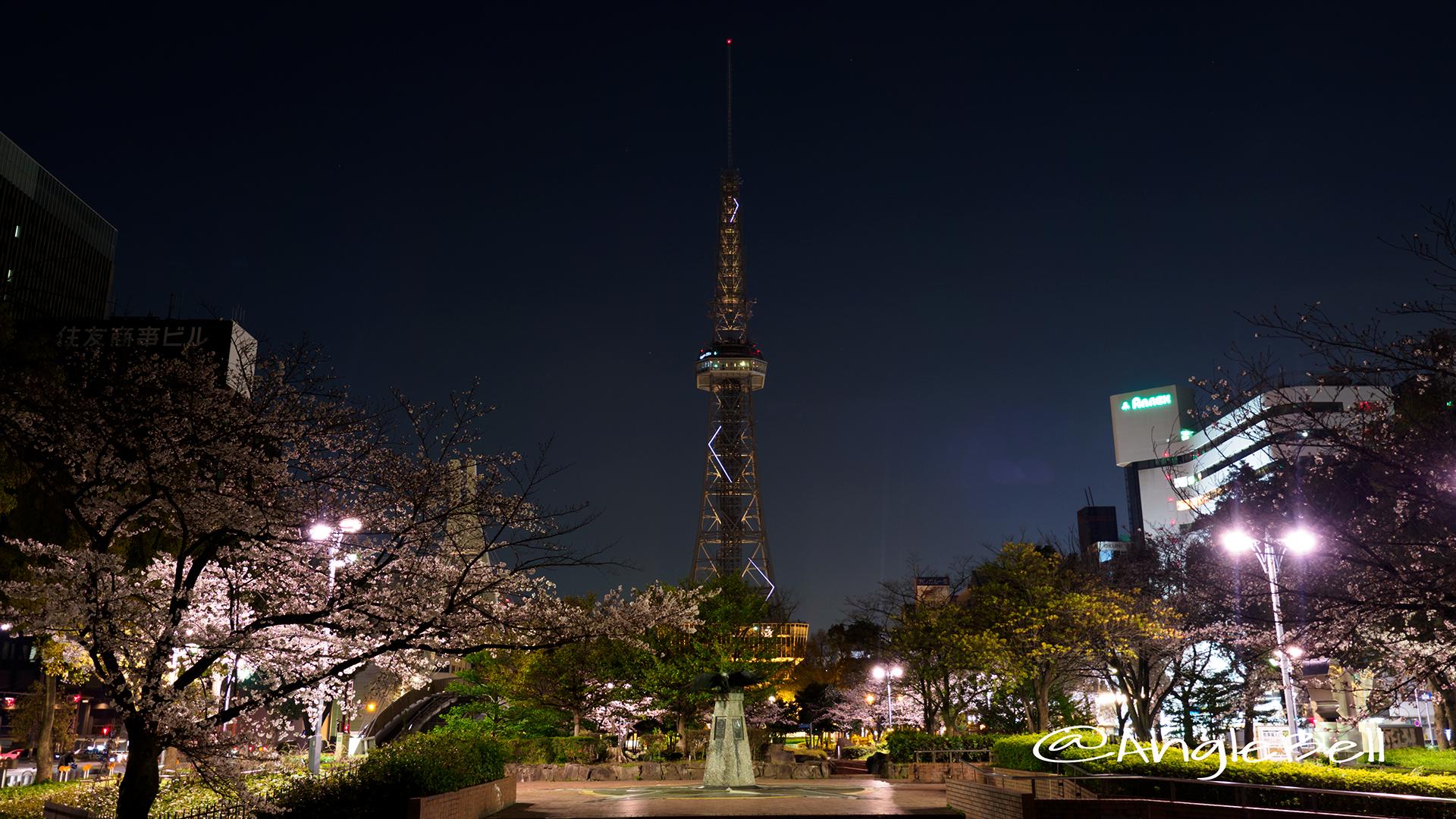 夜桜 名古屋テレビ塔と白頭鷲の像