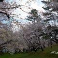 八幡山古墳 鶴舞公園
