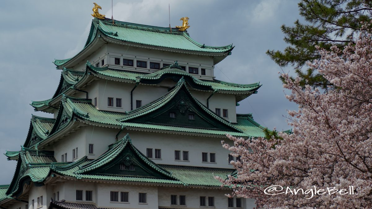名古屋城 天守閣と桜 2017