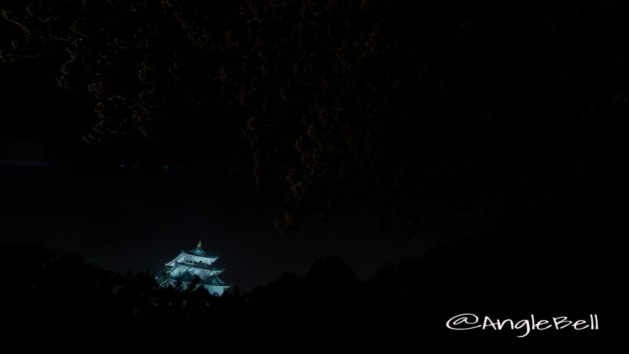 Nagoya Castle Night view