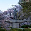 名城公園北園 青年像と桜