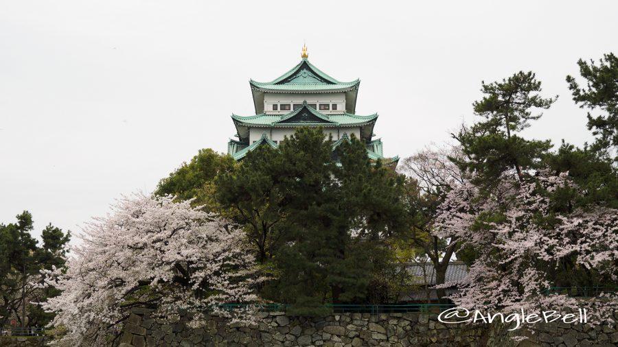 御深井丸外堀北側から見る名古屋城天守閣